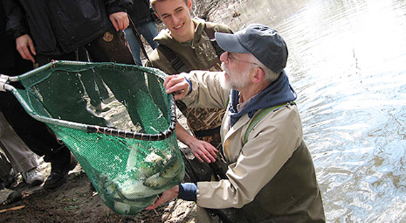 Dr. Joseph Rachlin inspects a net full of herring before releasing them into the Bronx River. Photo: Paula Gore, via Lehman College