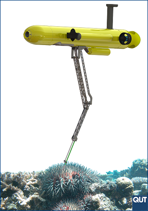 COTSBot, the Crown of Thorns Starfish-hunting robot.