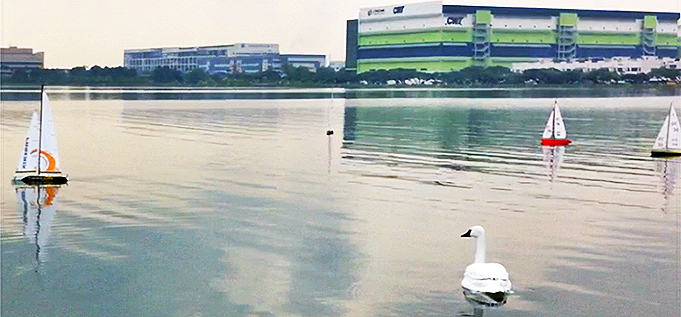 A robot swan, developed by the National University of Singapore, on patrol.  Via the  National University of Singapore  .