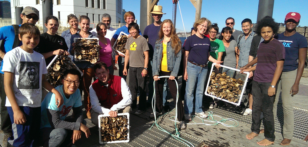 Students and teachers of the Billion Oyster Project at New York Harbor.
