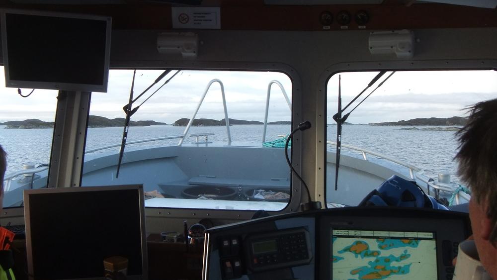 Setting kelp lines 13.jpg