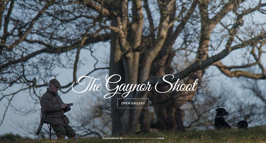 32) The Gaynor Shoot - 1st December, 2017.