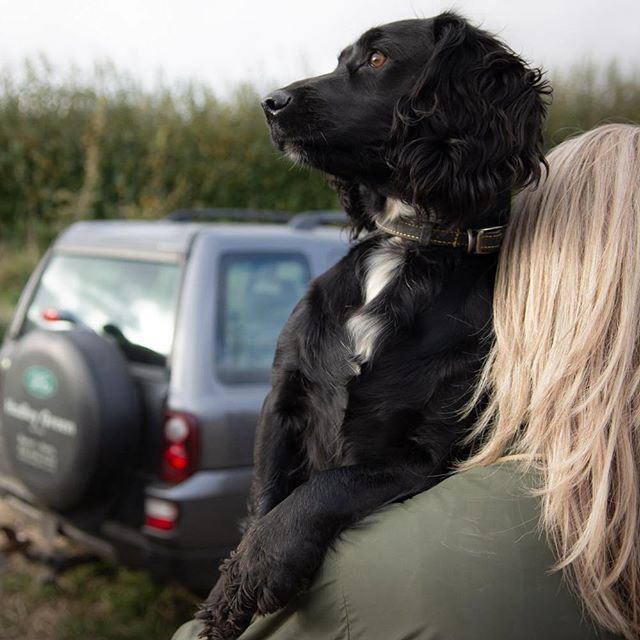 Why walk, when you can get your owner to carry you? This little pooch spent the day working her socks off, so to be fair she earned it. #hamishbaird_photography #gundog, #fieldsportsphotography