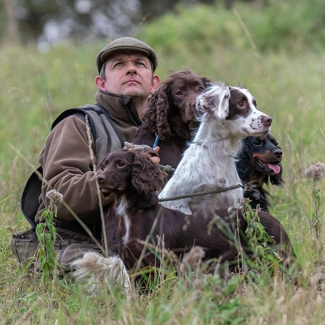 All on peg, with eyes on stalks. #hamishbaird_photography, #gundog #fieldsports  #onpeg