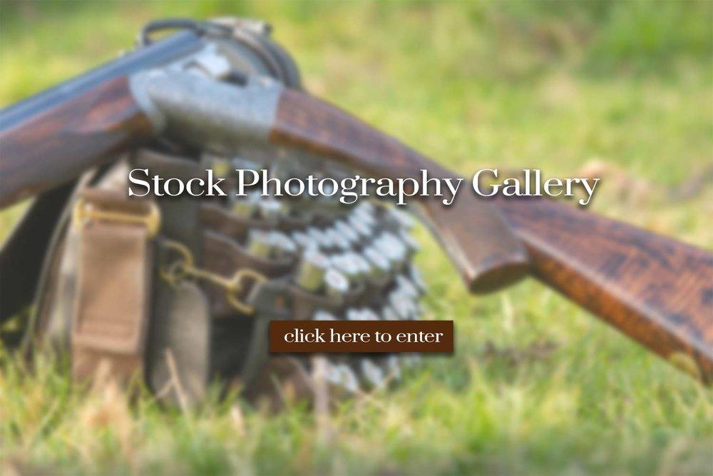 Stock_photogrphy_graphic.jpg