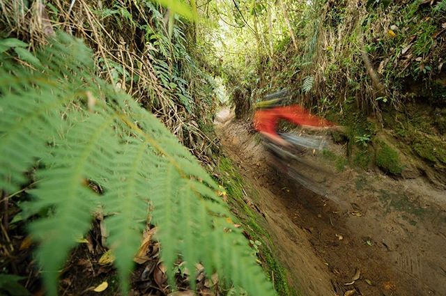 Just too fast for @duncanphilpott 's camera 😂 keep up to date with the @world_enduro this weekend for all the action from Colombia #ews #enduroworldseries #enduro #columbia #manizales #mtb
