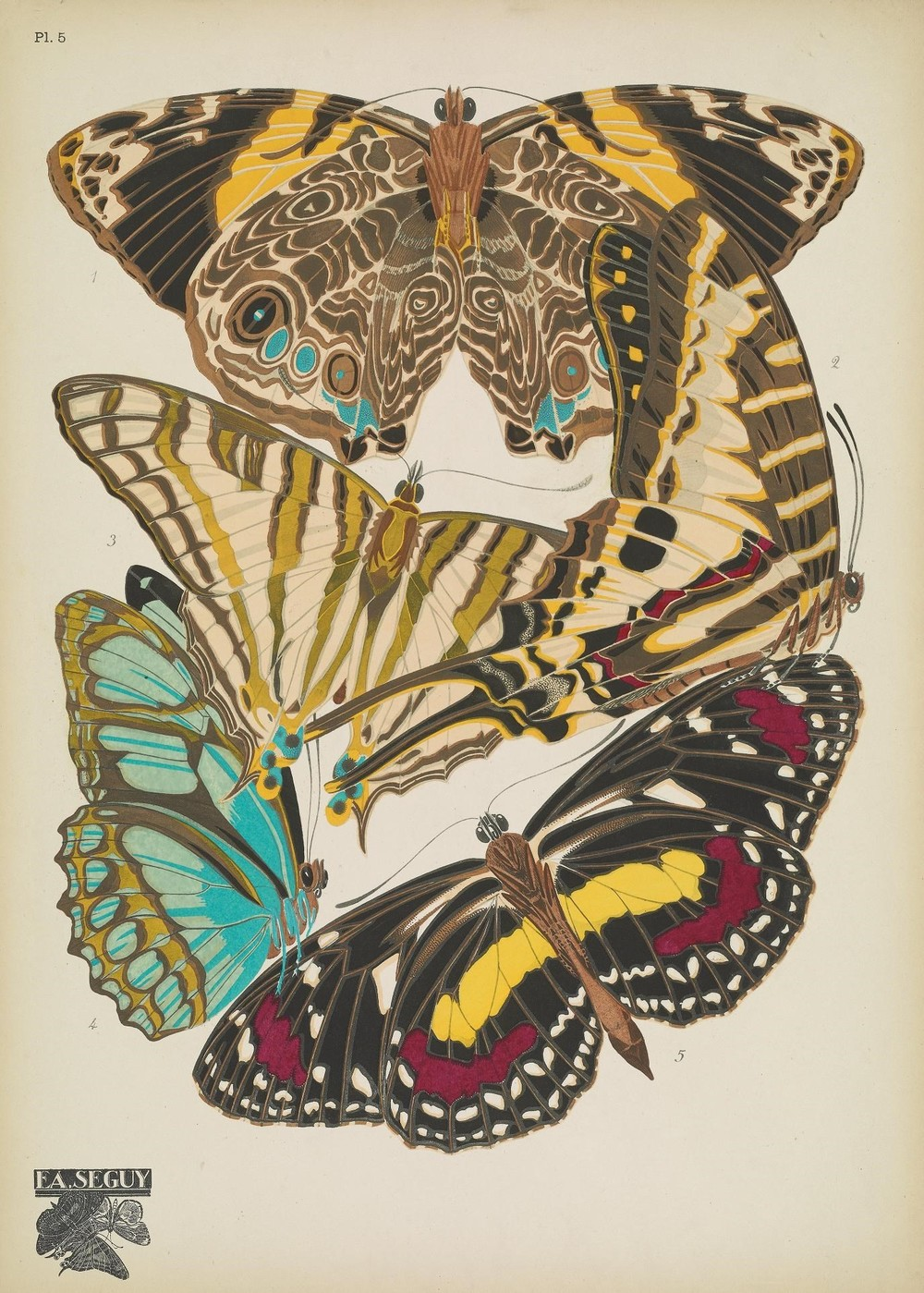 Vintage Printable Butterfly Art