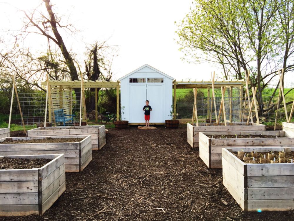 raised beds, chicken coop and run