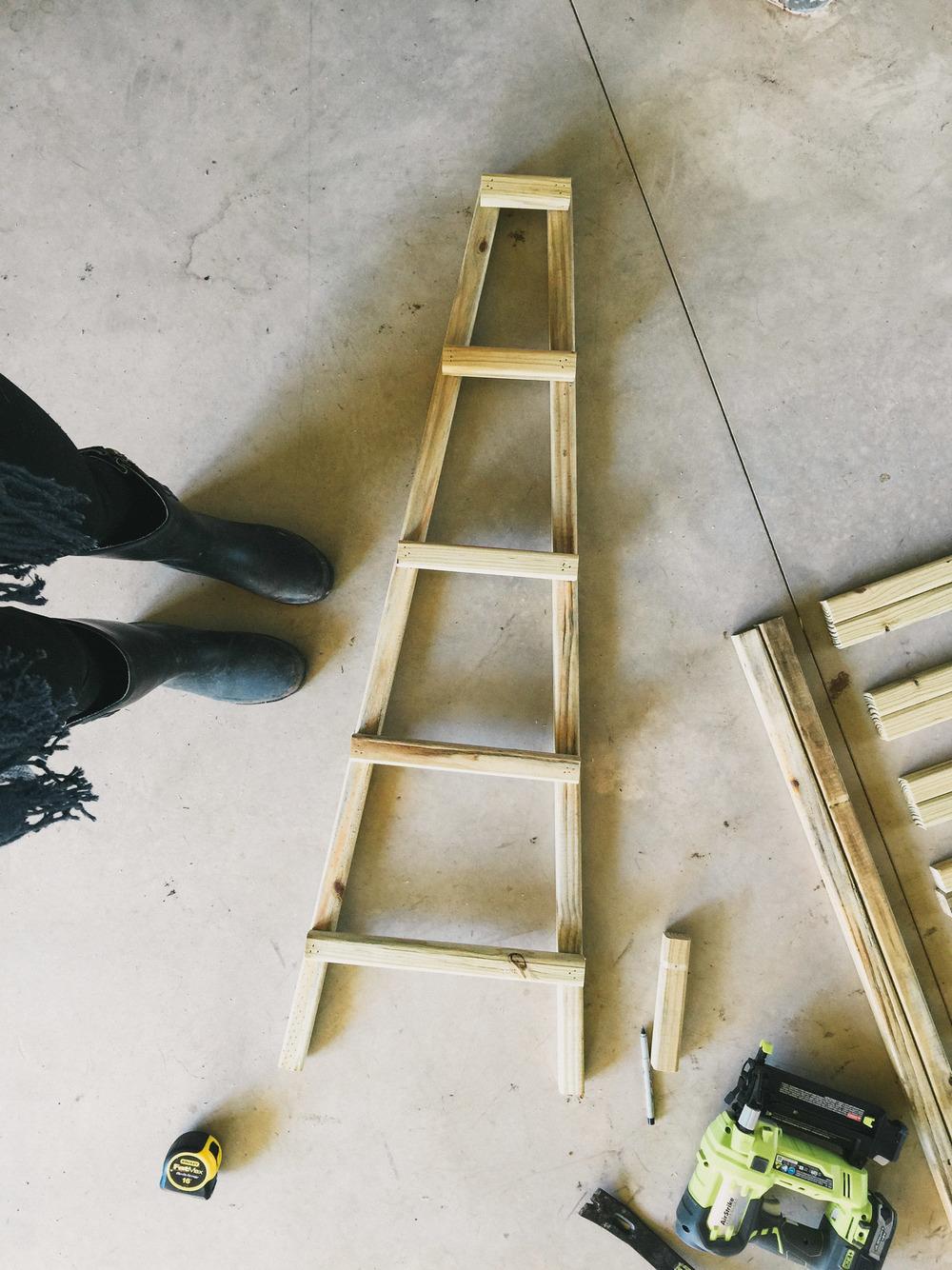 DIY honeysuckle tuteur trellis inside barrel