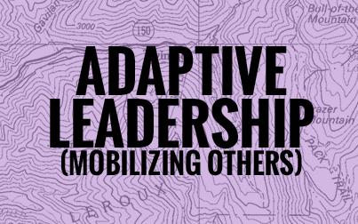 Adaptive Ledaership.png