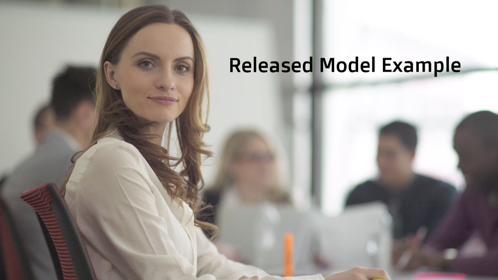 Released Model Example