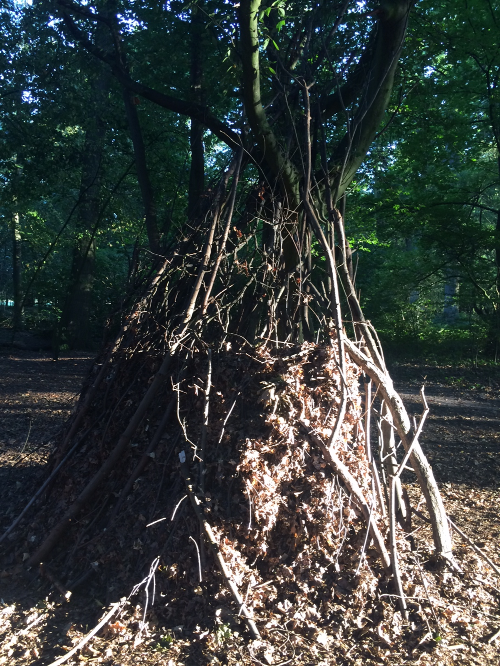 The Blair Witch-like structure I happened upon in the woods.