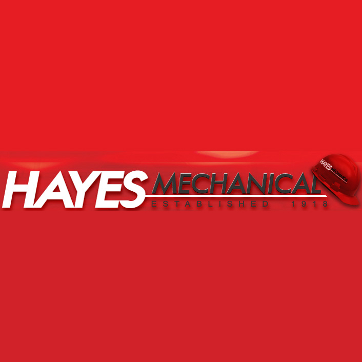 logo_hayes1.jpg