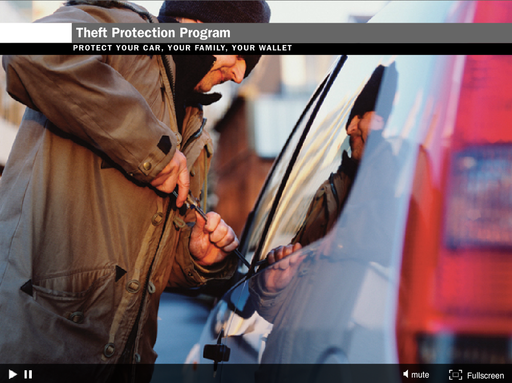 Safe-Guard Theft Protection Program Video