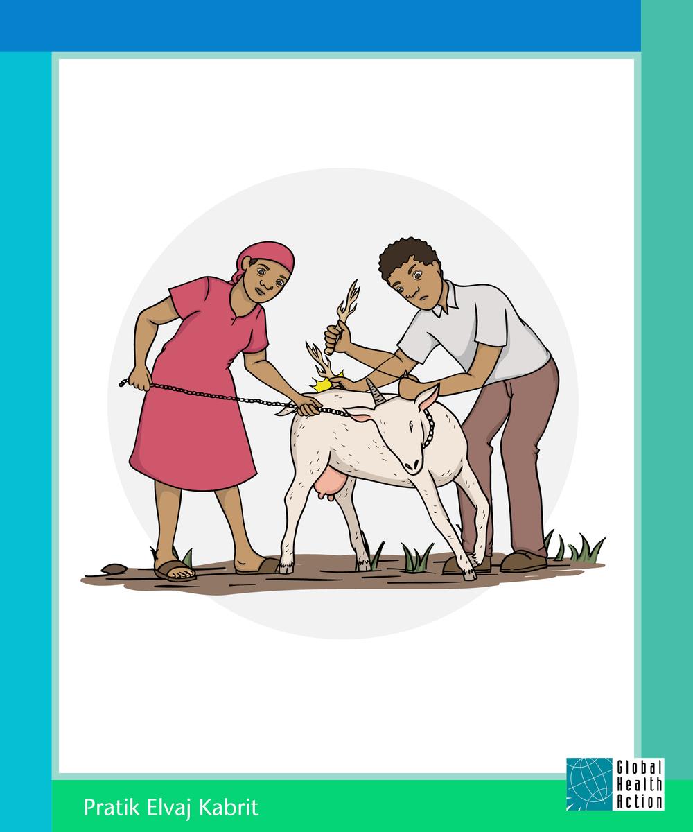 Goat Program Poster 3