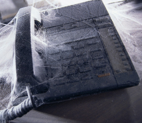 Telephone Covered by Cobwebs