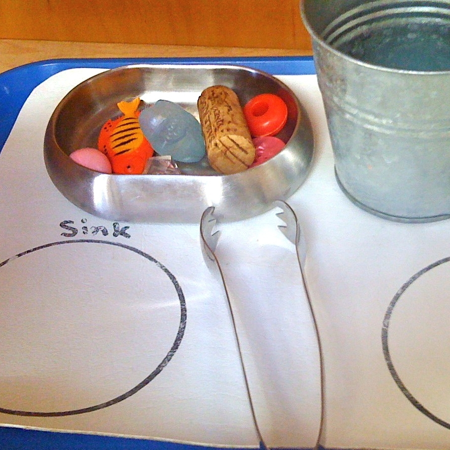Performing an experiment to determine which items will sink and which ones will float