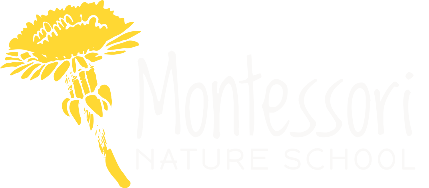 Montessori Nature School