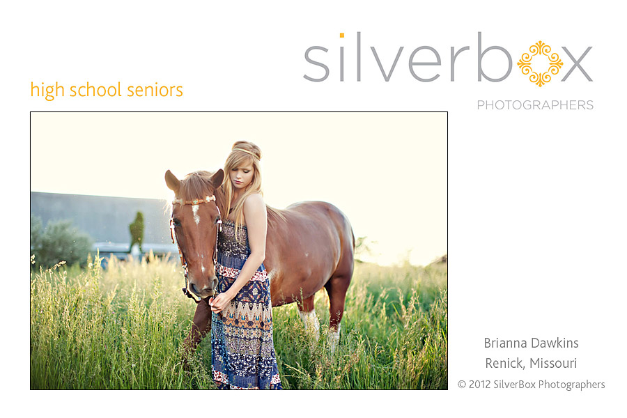 Brianna-Dawkins-HS-Senior2.jpg