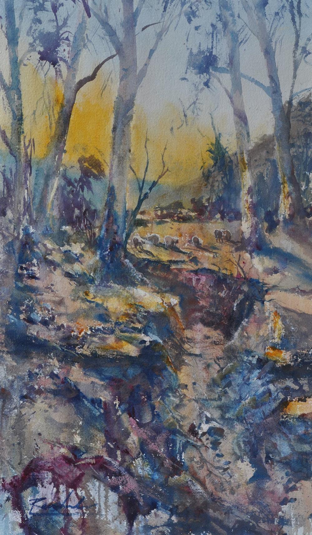 Morning Light at Flinders Ranges