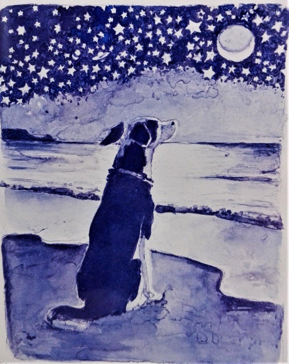 Moonlit Dog - SOLD