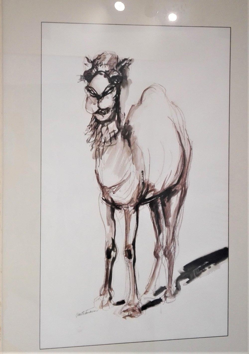 Camel Ship of the Desert - SOLD