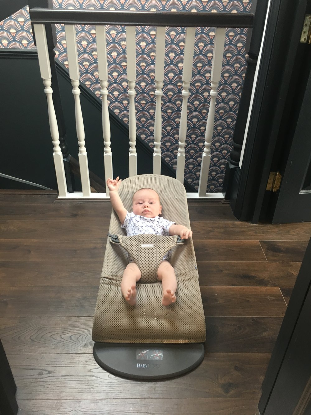 Baby Bjorn bouncer bliss