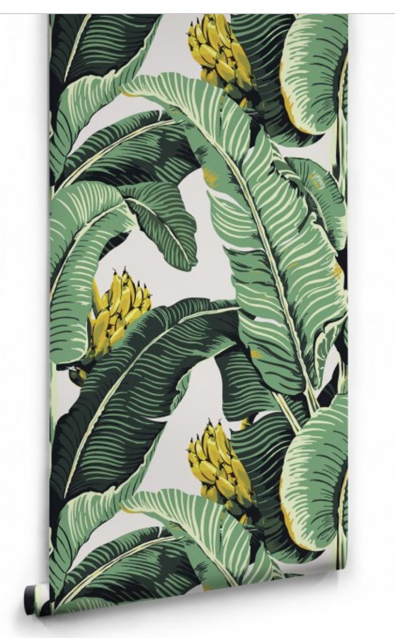 Milton & King Jungle palm £198 per roll