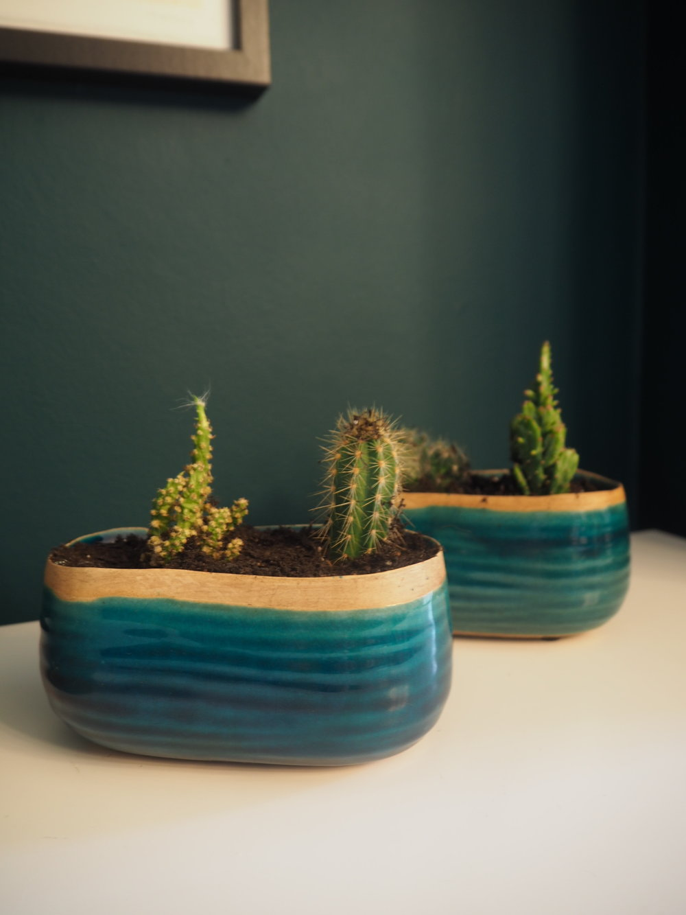 Ivyline indoor plant pots