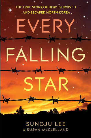 Every Falling Star - shewouldread.com