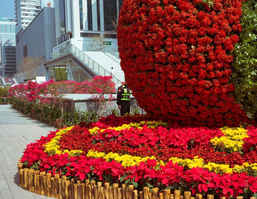 China | DZESIKA DEVIC-8.jpg