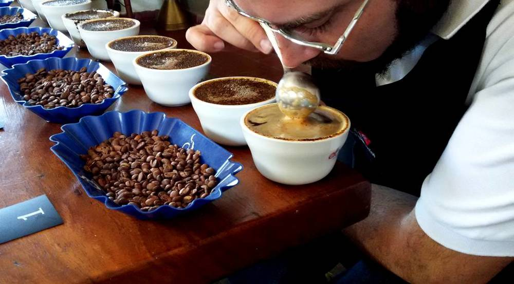 we are consistently cupping our coffees to determine and asses its quality and consistency. we work together with producers and buyers alike in order to obtain the best quality coffees year after year.