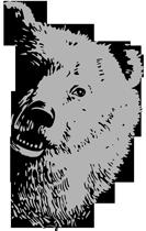 bear-half-face.png
