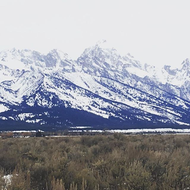 #teton views #wyoming