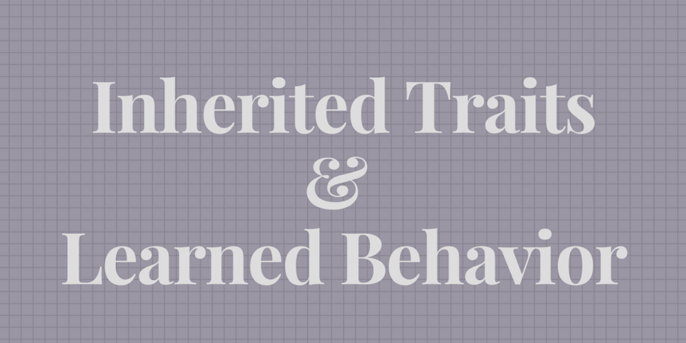 3-LS3-1   Students will learn the difference between inherited traits and learned behavior .