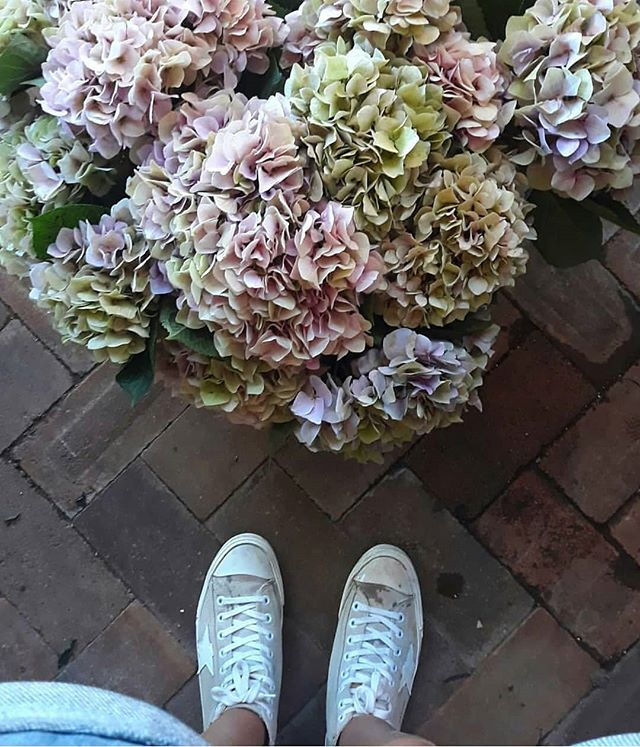 Hydrangea = LIFE @heatherdownes_ thanks for snapping this oh too perfect floral goodness at work today xx #love #byronbayflorist #localbusinesses #byronbay #freshflowers #marketflowers #hydrangea #freshcut #loveourstaff