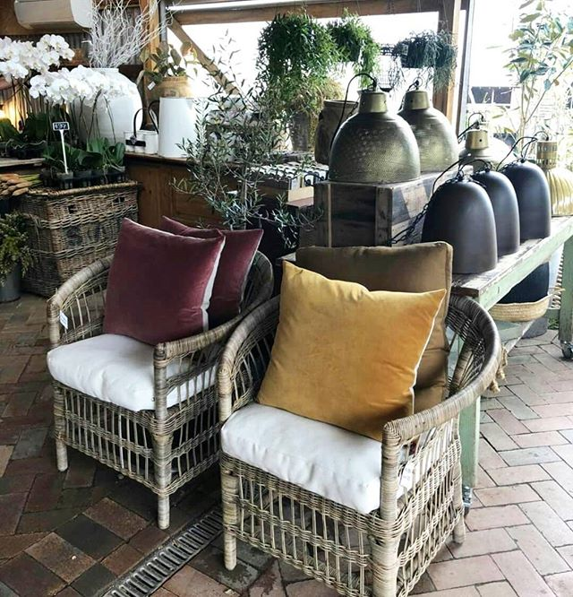 Still some amazing pieces left with our huge 30% off homewares sale. Beautiful local cushions selling fast. Our lights are so stunning and some are down to $120. Pop instore today and grab some goodies before they all go xx #byronbay #local #locallymade #sale #cushions #lights #chairs #baskets