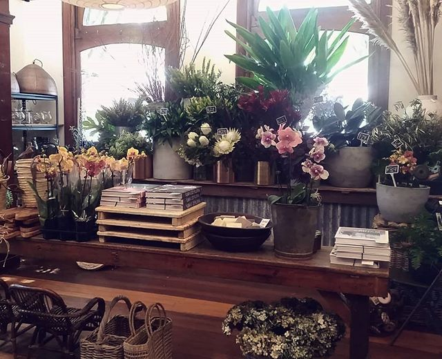 Did you know we've moved to Bangalow @theflowerbarbangalow2479 We are now open 7 days a week and delivery to all areas around Byron Bay area. #flowers #byronbay #florist #weddingflowers #bangalow #newstore