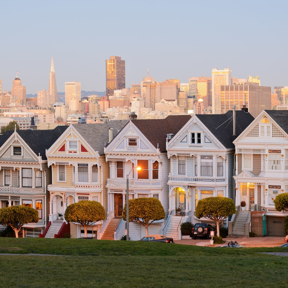 See the Painted Ladies on the tour