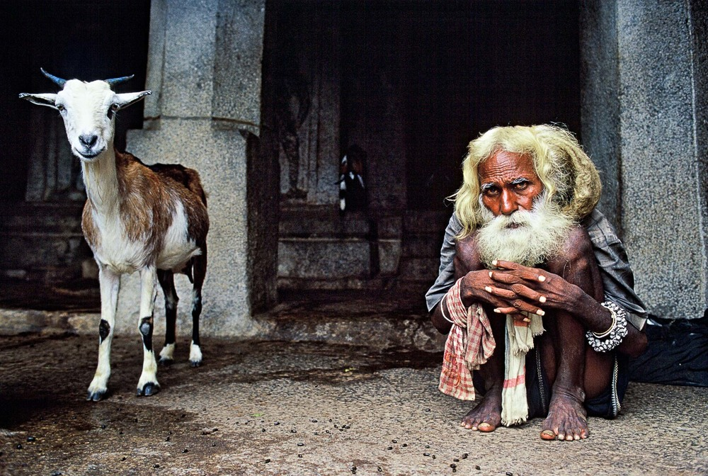 goat_and_hermit_india.jpg