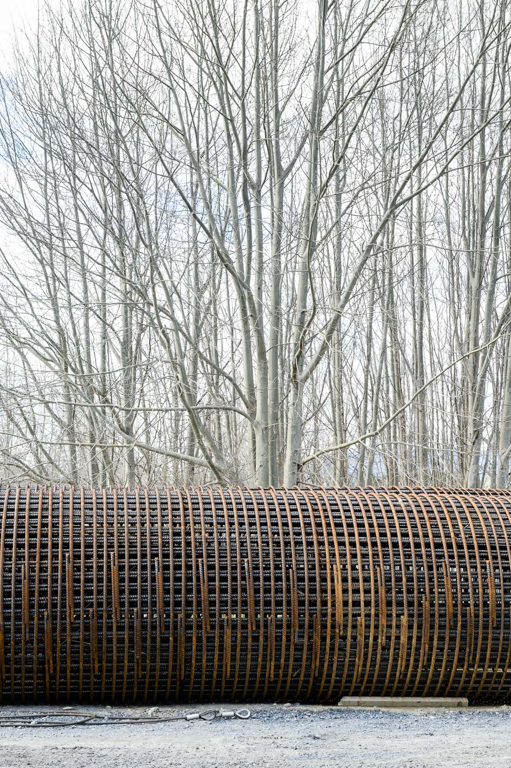 winter-steel-and-willow.jpg