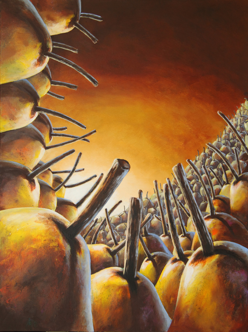 bill_higginson_the venus pear trap-surrealism_painting-acrylic-painting-pears-fruit-canvas