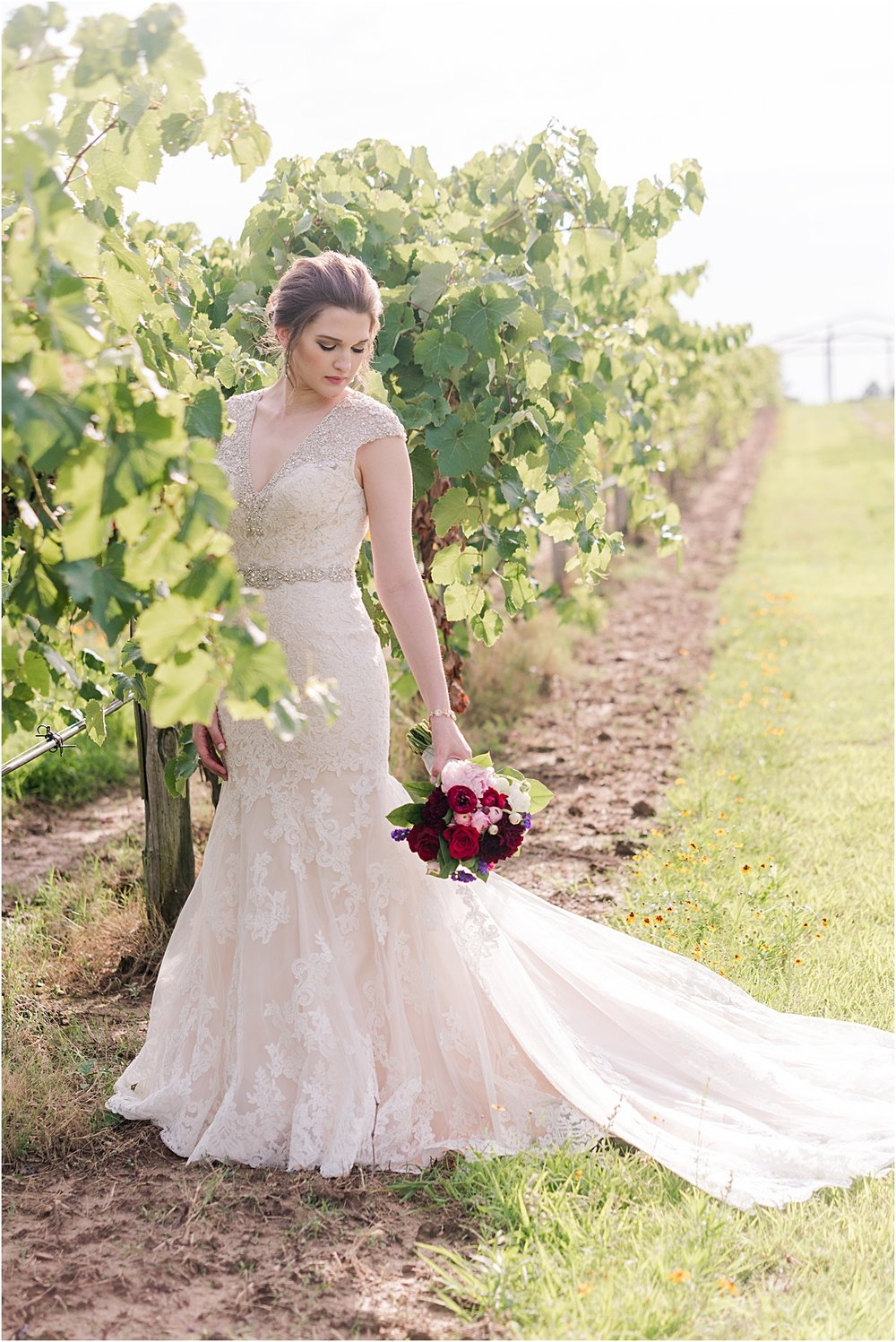 Arkansas bride in vineyard