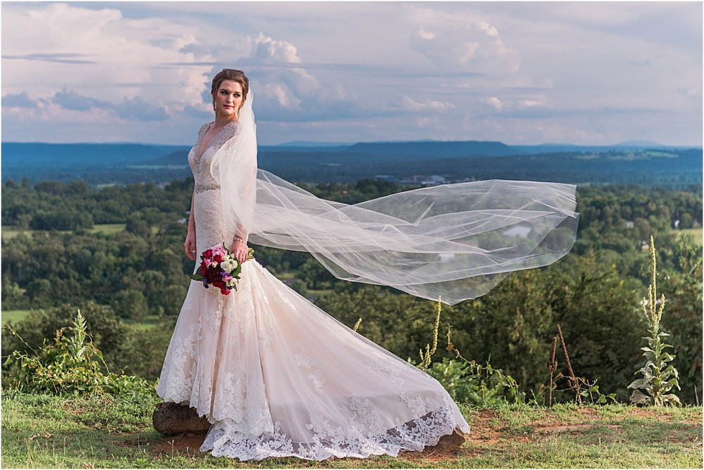 Arkansas bride veil picture