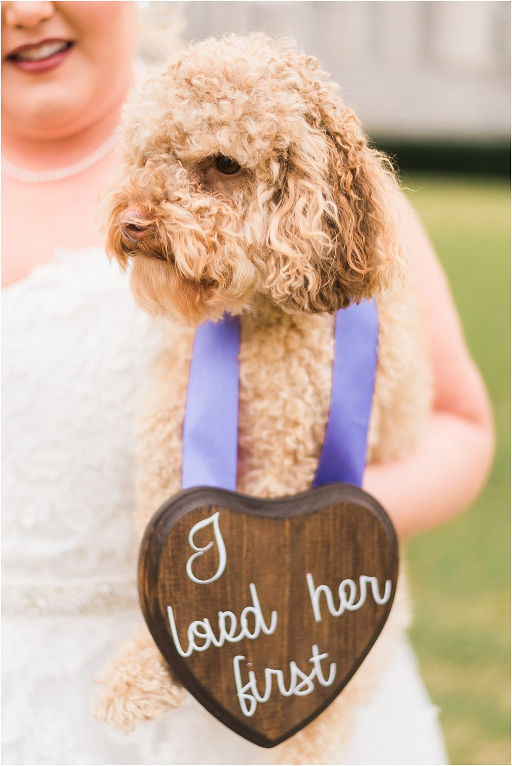 Puppy at bridal session