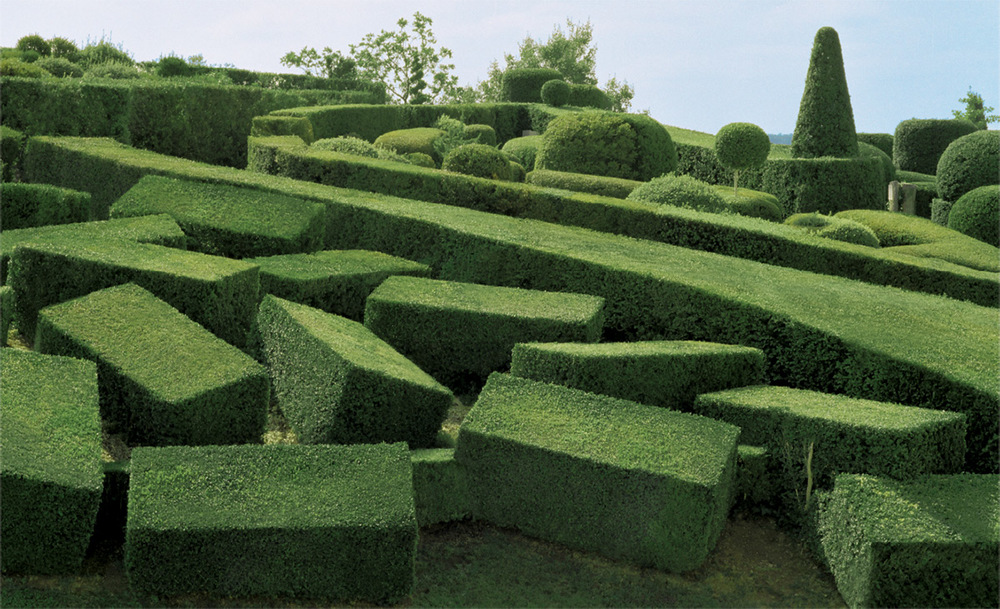 topiary-4.jpg