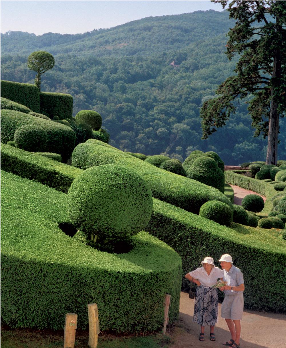 topiary-6.jpg