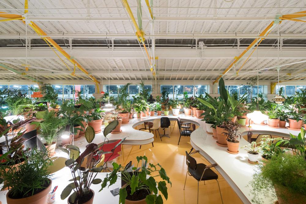 second-home-lisboa-selgascano-interiors-offices-lisbon-co-working_dezeen_2364_col_10.jpg