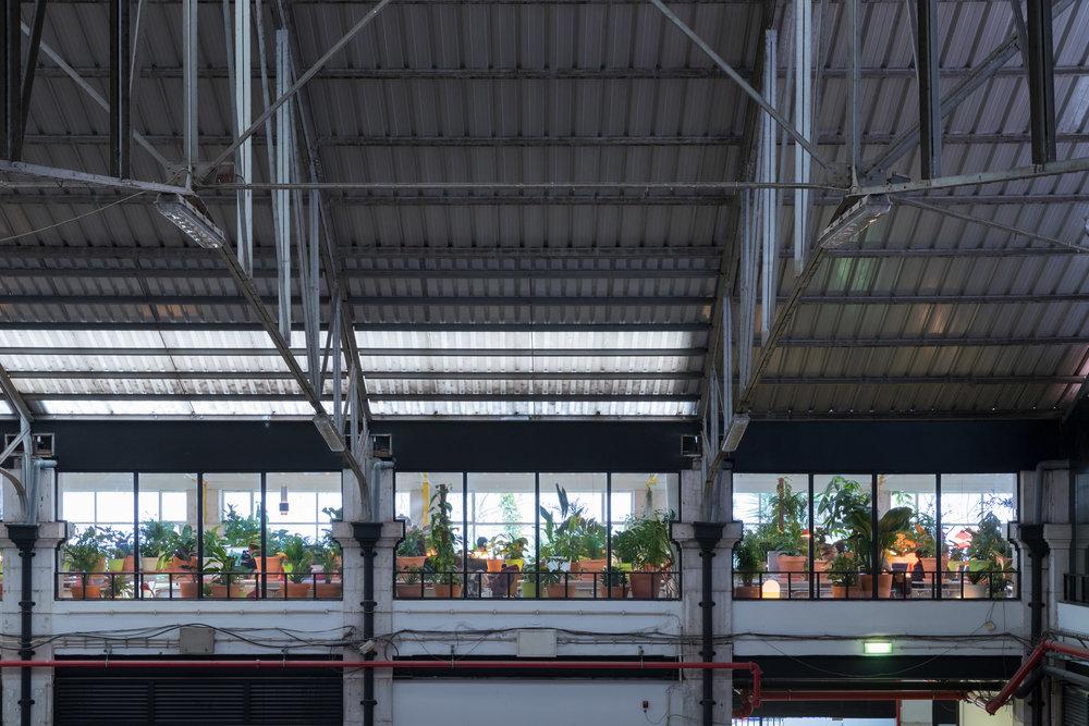 second-home-lisboa-selgascano-interiors-offices-lisbon-co-working_dezeen_2364_col_6.jpg