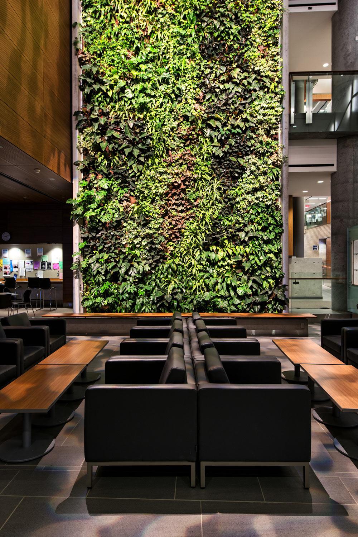 Roundup-Living-Wall-10-Diamond-Schmitt-Architects.jpg